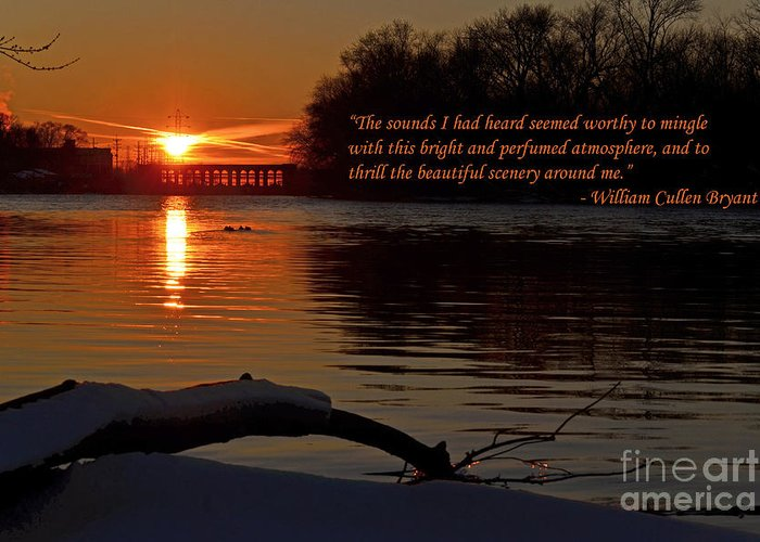 Color Photography Greeting Card featuring the photograph Inspirational Sunset With Quote by Sue Stefanowicz