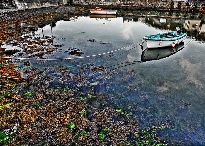 Ireland Greeting Card featuring the photograph Irish Low Tide by Patrick Flynn