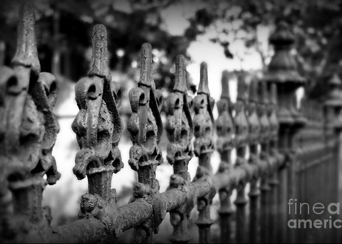 Fence Greeting Card featuring the photograph Iron Fence 2 by Perry Webster