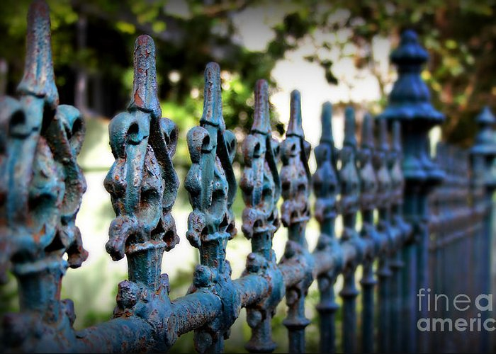 Fence Greeting Card featuring the photograph Iron Fence by Perry Webster