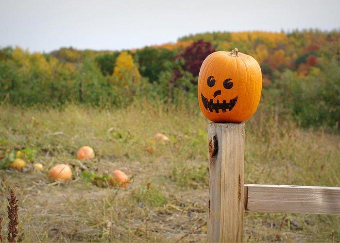 Pumpkins Greeting Card featuring the photograph Jack O'lantern by Linda Mishler