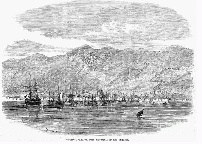1865 Greeting Card featuring the photograph Jamaica: Kingston, 1865 by Granger