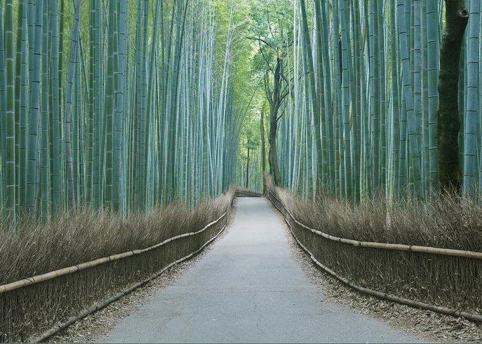 Photography Greeting Card featuring the photograph Japan Kyoto Arashiyama Sagano Bamboo by Rob Tilley