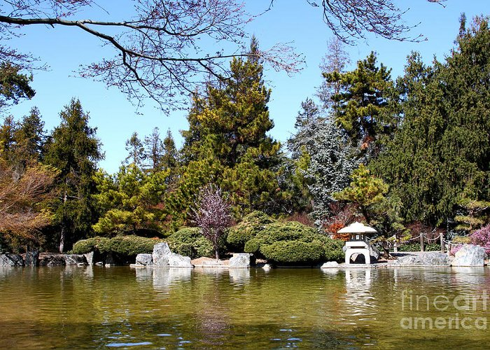 Japanese friendship garden san jose california 7d12782 greeting landscape greeting card featuring the photograph japanese friendship garden san jose california 7d12782 by m4hsunfo