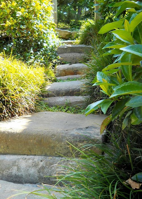Photography Greeting Card featuring the photograph Japanese Garden Stone Steps by Lynnette Johns
