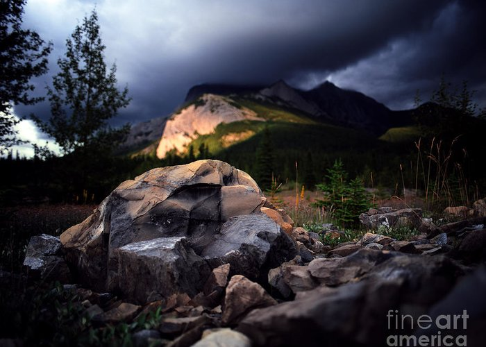 Summer Storm Greeting Card featuring the photograph Jasper - Summer Storm by Terry Elniski