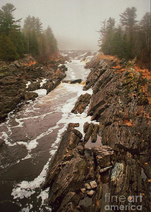 Jay Cooke Greeting Card featuring the photograph Jay Cooke Under Fog by Ever-Curious Photography
