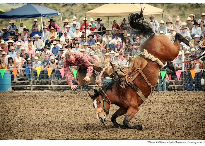 Jordan Greeting Card featuring the photograph Jordan Valley Arena Action Ranch Bronc 2012 by Mary Williams Hyde