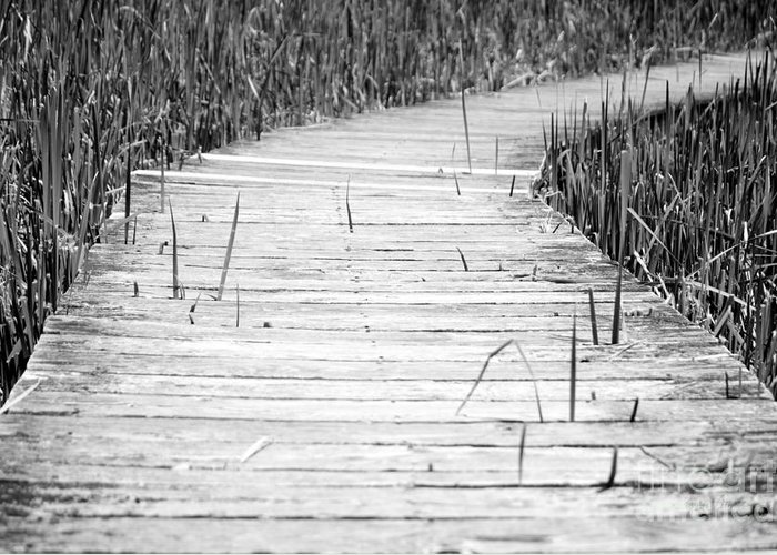 Boardwalk Greeting Card featuring the photograph Journey Of Soles by Luke Moore