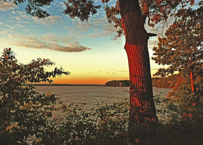 Lake Greeting Card featuring the photograph Kentucky Lake Sunrise by William Fields