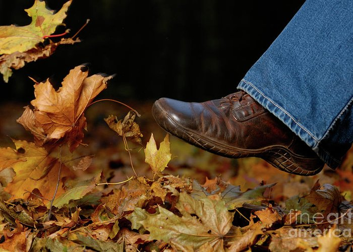 Footwear Greeting Card featuring the photograph Kicking Fallen Autumn Leaves by Oleksiy Maksymenko