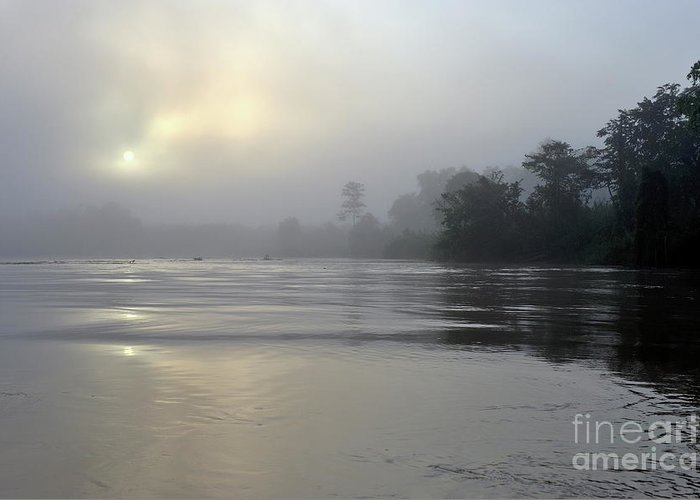 Mystery Greeting Card featuring the photograph Kinabatangan River At Sunrise by Sami Sarkis