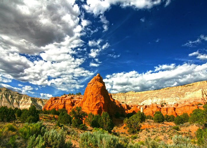 Utah Greeting Card featuring the photograph Kodachrome Basin State Park by Mark Smith