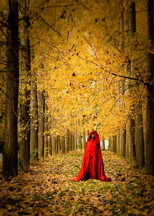 Trees Greeting Card featuring the photograph Lady In Red - 5 by Okan YILMAZ
