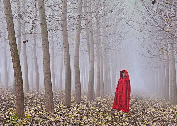 Trees Greeting Card featuring the photograph Lady In Red - 7 by Okan YILMAZ