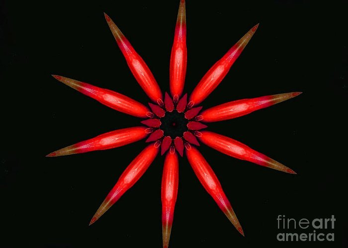 Kaleidoscope Greeting Card featuring the photograph Lahaina by Mark Gilman