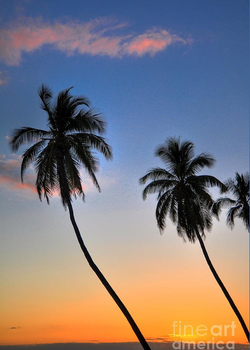 Lahaina Greeting Card featuring the photograph Lahaina Palms by Kelly Wade