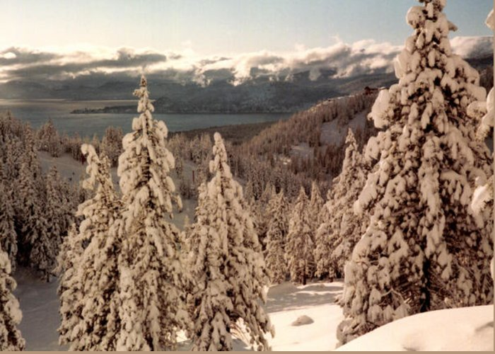 Snow Greeting Card featuring the photograph Lake Tahoe Snow by Christina Solstad