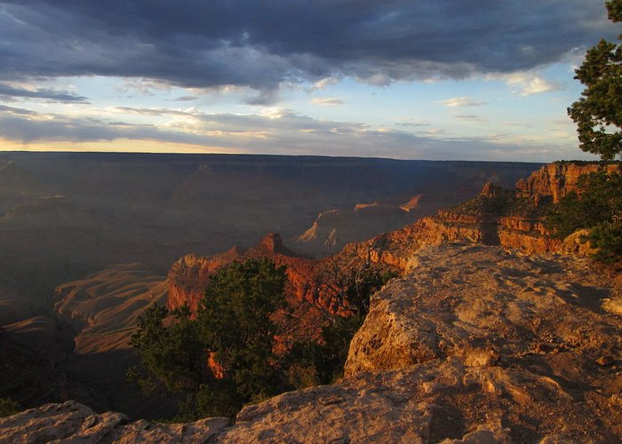 Sunset Greeting Card featuring the photograph Last Rays At Grand Canyon by Pasha Sourbeer