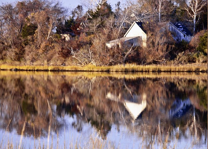 Reflection Greeting Card featuring the photograph Late Fall Reflection by Vicki Jauron