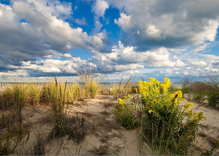 Beach Greeting Card featuring the photograph Late Summer Dunes Ocean City by Jim Moore