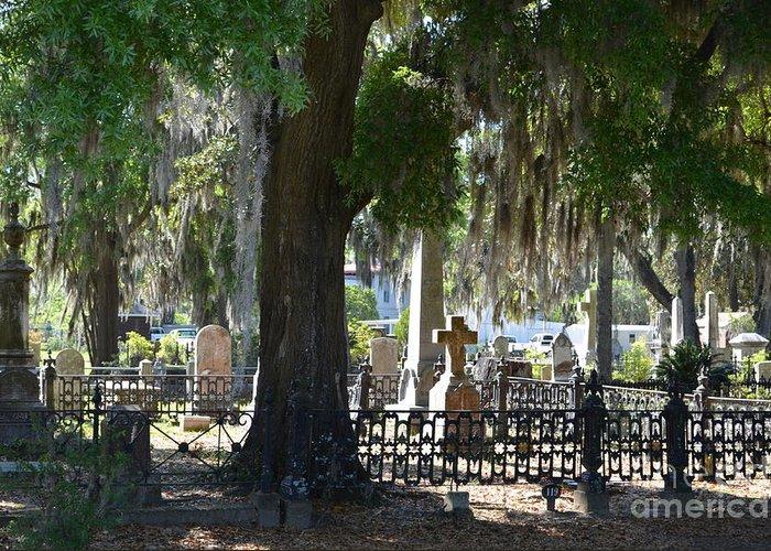 Laurel Greeting Card featuring the photograph Laurel Grove Cemetery - Savannah Georgia by Randy Edwards