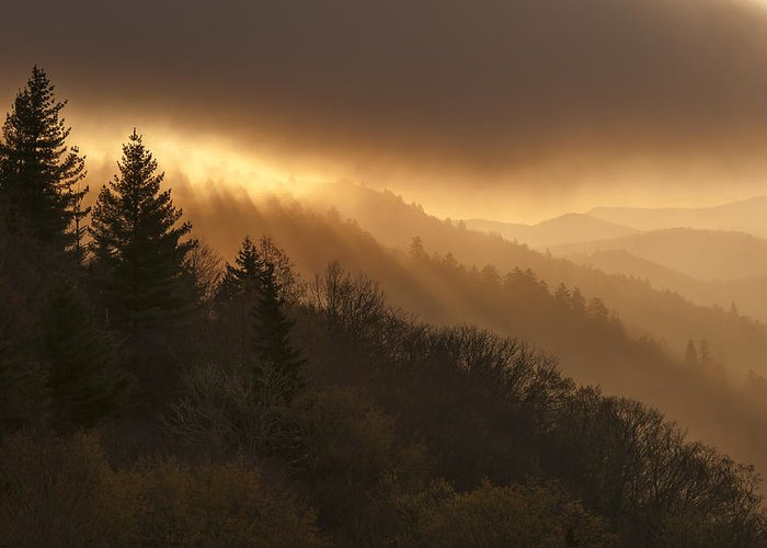 Layers Greeting Card featuring the photograph Layers Of Light by Joseph Rossbach