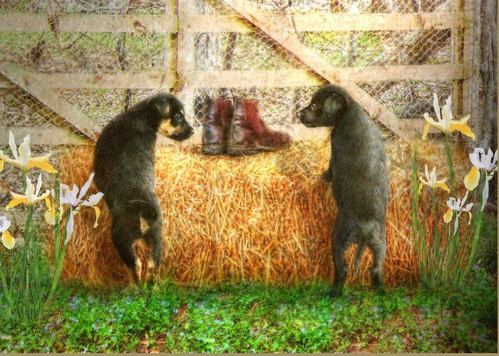 Puppy Greeting Card featuring the photograph Lead Me Not Into Temptation by Trudi Simmonds
