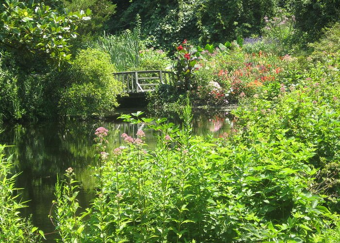 Landscape Greeting Card featuring the photograph Leaming Run Gardens Pond by Dan Callahan