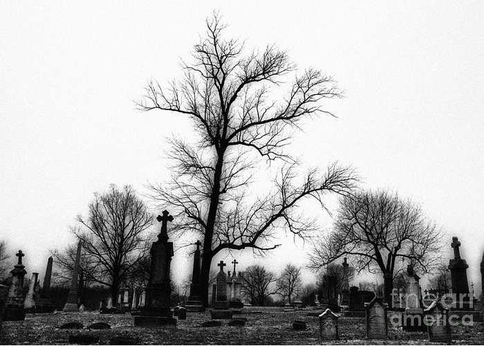 Black & White Infrared Photography Greeting Card featuring the photograph Leaning Crosses by Jeff Holbrook