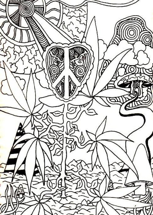 Drawing Greeting Card featuring the drawing Leaves by Andrew Padula