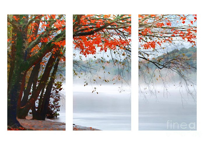 Autumn Greeting Card featuring the photograph Leaves Of Red by Darren Fisher