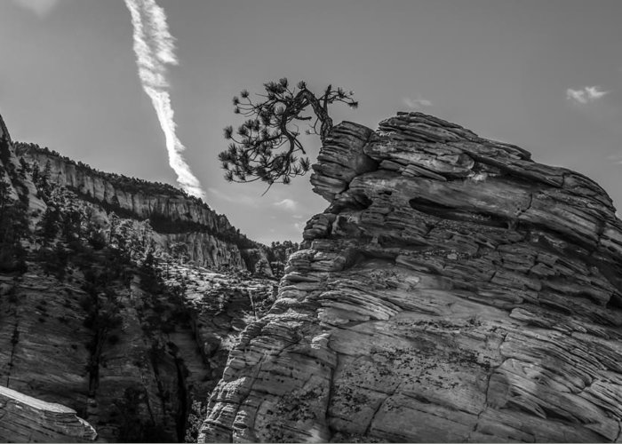 Zion Greeting Card featuring the photograph Life On The Edge by George Buxbaum