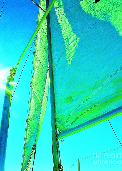 Sailboats Greeting Card featuring the photograph Lines And Sheets by Julie Lueders