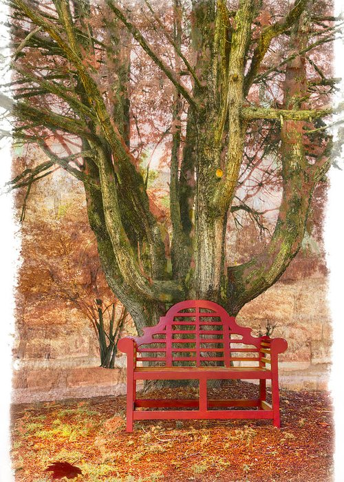 Fine Art Greeting Card featuring the photograph Little Red Bench by Debra and Dave Vanderlaan