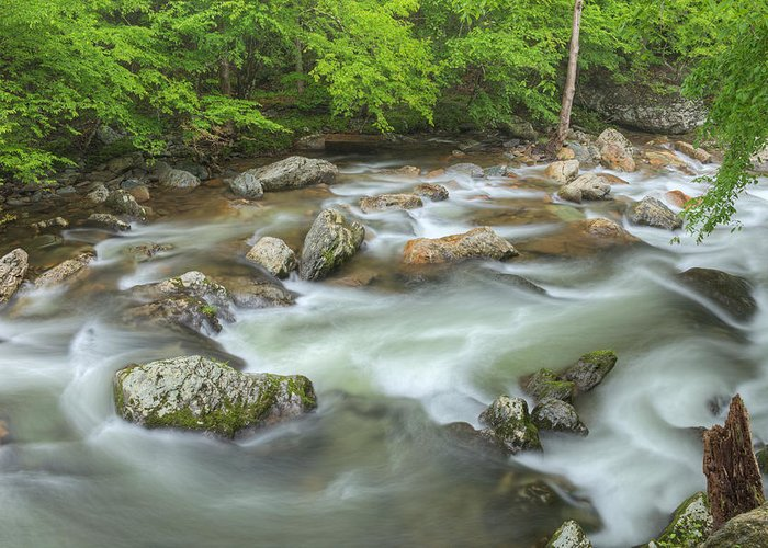 Beautiful Greeting Card featuring the photograph Little River Rapids by Dean Pennala