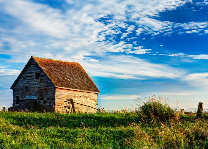 Abandoned Greeting Card featuring the photograph Little Shed On The Prairie by Matt Dobson