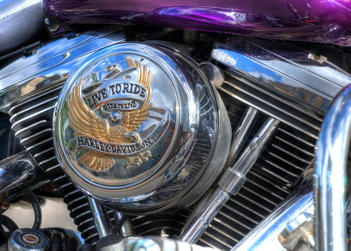 Harley Davidson Greeting Card featuring the photograph Live To Ride by Steve Purnell
