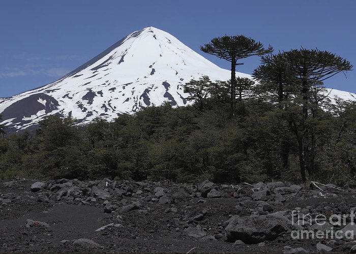 No People Greeting Card featuring the photograph Llaima Volcano, Araucania Region, Chile by Martin Rietze