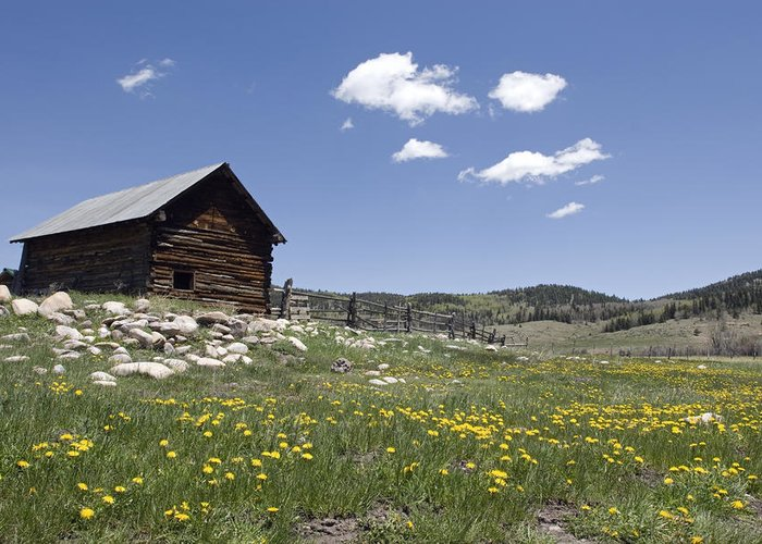 Day Greeting Card featuring the photograph Log Cabin On The High Country Ranch by Rich Reid