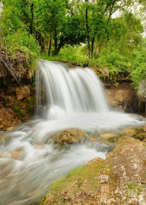 Waterfall Greeting Card featuring the photograph Logan Canyon Falls by Dennis Hammer