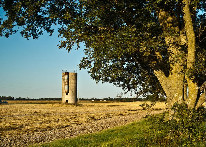 Silo Greeting Card featuring the photograph Lonely Silo 4 by Douglas Barnett