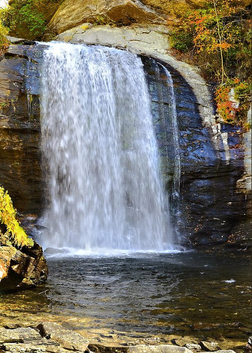Autumn Greeting Card featuring the photograph Looking Glass Falls by Susan Leggett