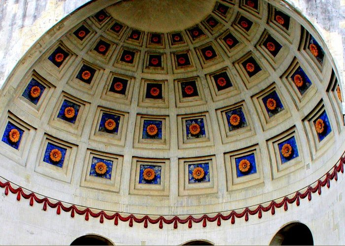 Dome Greeting Card featuring the photograph Looking Up by Laurel Talabere
