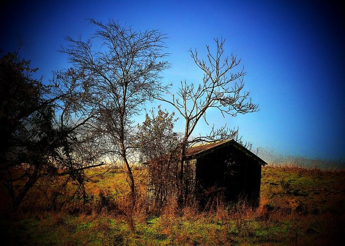 Virginia Greeting Card featuring the photograph Lost Shed by Joyce Kimble Smith