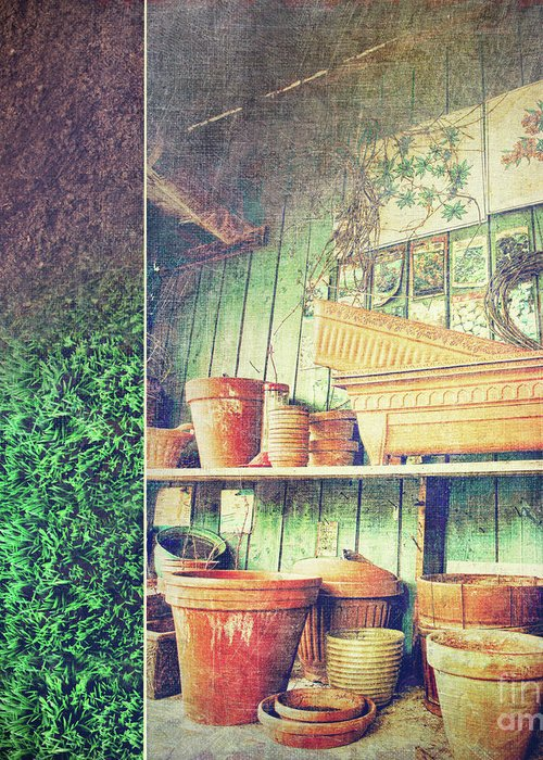 Basket Greeting Card featuring the photograph Lots Of Different Size Pots In The Shed by Sandra Cunningham