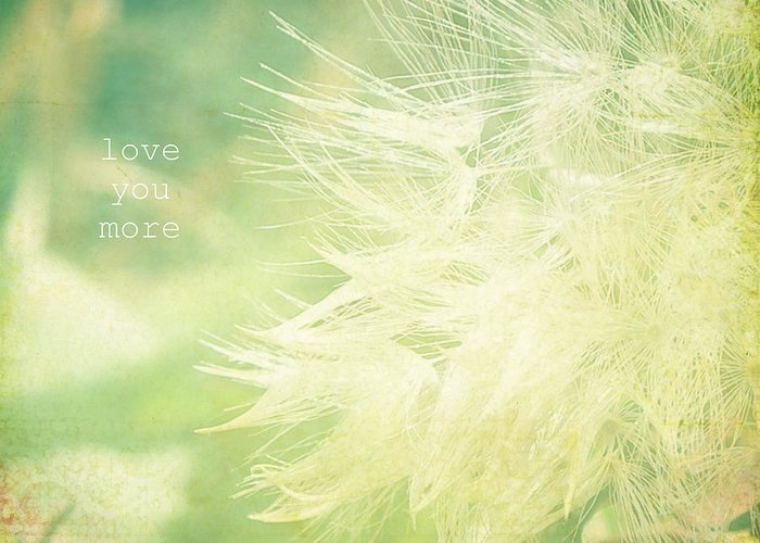 Macro Shot Of Dandelion Gone To Seed. Greeting Card featuring the photograph Love You More by Robin Dickinson