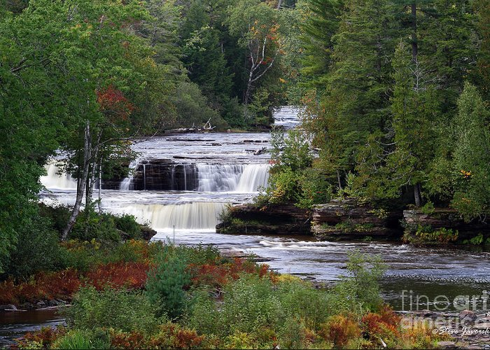 Michigan Upper Peninsula Greeting Card featuring the photograph Lower Tahquamenon Falls Area by Steve Javorsky