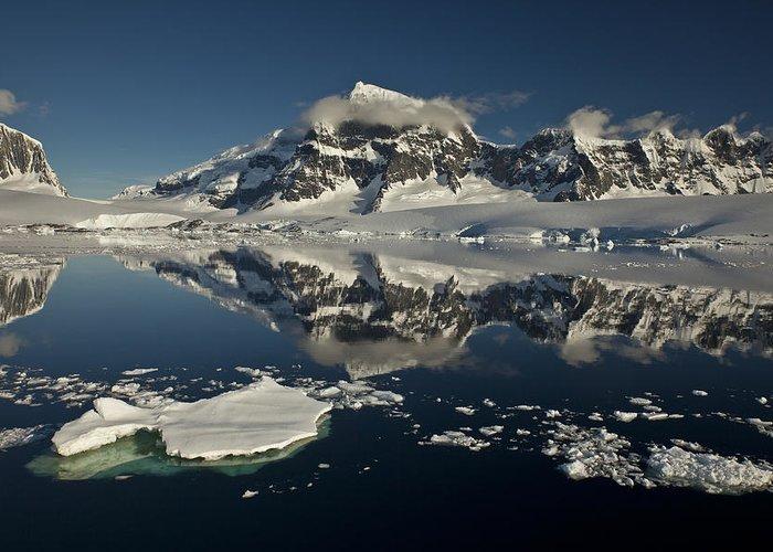00479580 Greeting Card featuring the photograph Luigi Peak Wiencke Island Antarctic by Colin Monteath