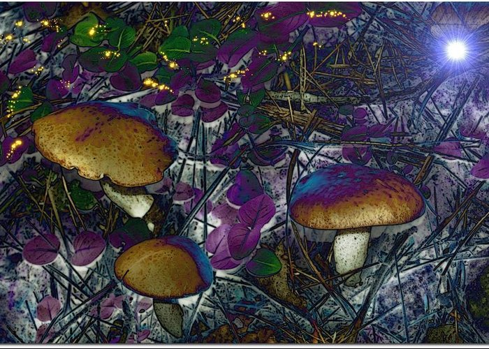 Photo Greeting Card featuring the photograph Magic Mushrooms by Barbara S Nickerson